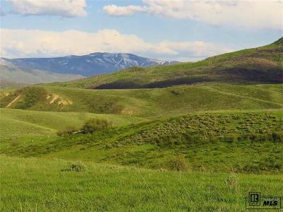 Steamboat Springs Residential Lots & Land Active: 22982 Routt County Road 54