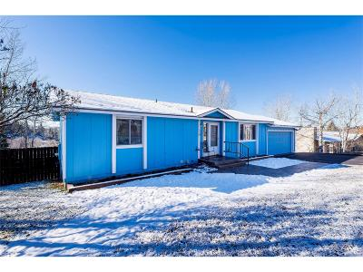 Steamboat Springs Single Family Home Active: 62 Woods Drive