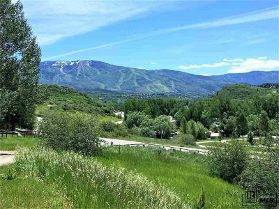 Steamboat Springs Residential Lots & Land Active: 1301 Lot 3 Conestoga Circle