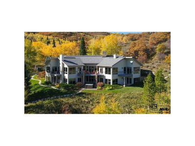 Steamboat Springs Single Family Home Active: 36370 Trail Ridge Road