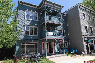 Crested Butte Condo/Townhouse For Sale: 111 Elk Avenue #3