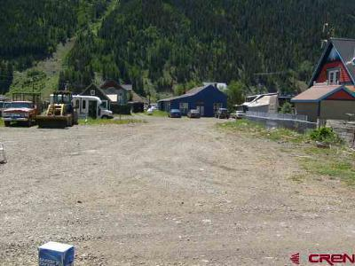 Silverton Residential Lots & Land For Sale: 1100 Mineral