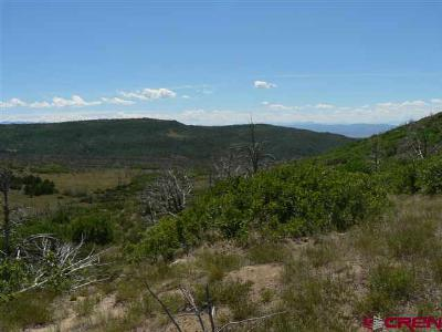 Cedaredge Residential Lots & Land For Sale: Current Creek