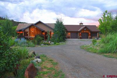 Single Family Home For Sale: 39686 Fruitland Mesa Road