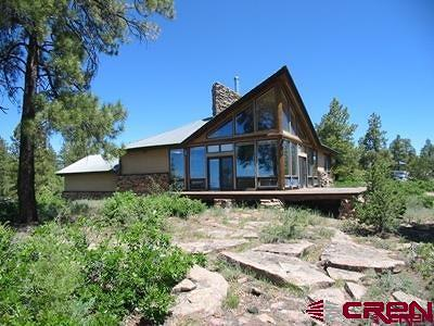 Mancos Single Family Home For Sale: 15990 Road 36.5