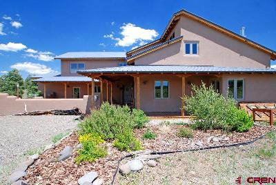Pagosa Springs Single Family Home For Sale: 2500 County Road 359