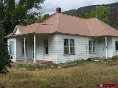 Ridgway Single Family Home For Sale: 17330 Highway 550