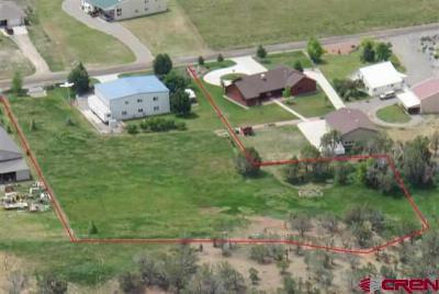 Single Family Home For Sale: 3447 Stearman Lane