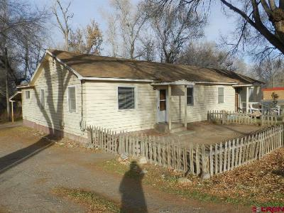 Montrose Multi Family Home For Sale: 637 Spring Creek Road/W Main Street