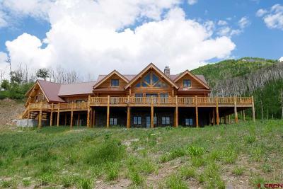 Cedaredge CO Single Family Home For Sale: $995,000