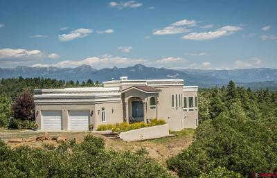 Pagosa Springs Single Family Home For Sale: 88 Peace