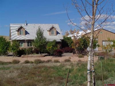 Montrose Single Family Home For Sale: 9222 6400