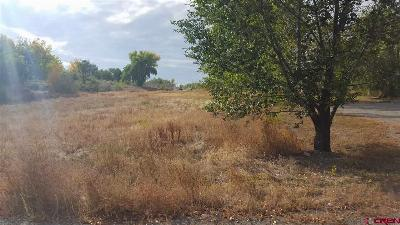 Delta Residential Lots & Land For Sale: 1290 E Third Street