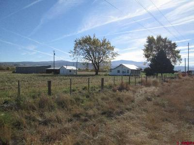 Montrose Single Family Home For Sale: 19250 Highway 550