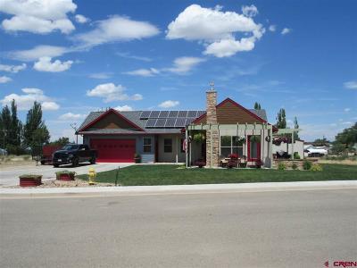 Cortez Single Family Home For Sale: 2271 S Par