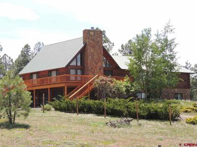 Pagosa Springs Single Family Home For Sale: 878 Loma Linda