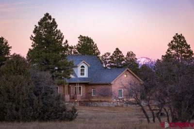 Pagosa Springs Single Family Home For Sale: 595 Yarrow