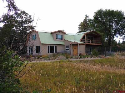 Mancos Single Family Home For Sale: 13010 Road 38.7