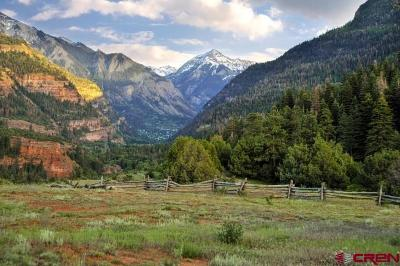 Ouray Single Family Home For Sale: 2901 County 17 Road Road