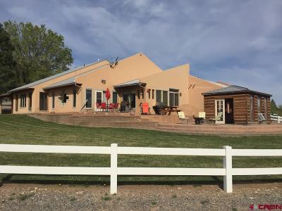 Olathe Single Family Home For Sale: 9816 Hillside