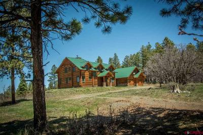 Pagosa Springs Single Family Home For Sale: 3912 Bull Elk
