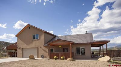 Mancos Single Family Home For Sale: 9191 Road 45.6