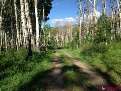 Cedaredge Residential Lots & Land For Sale