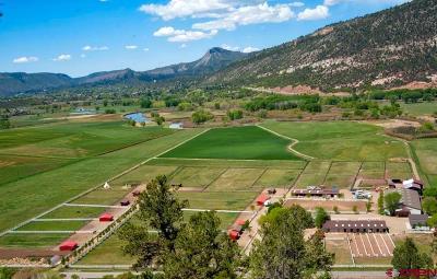 Durango Single Family Home For Sale: 1729 Cr 250