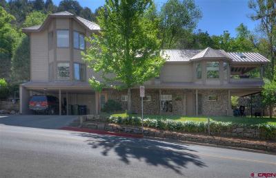 Durango CO Single Family Home Back on Market: $695,000