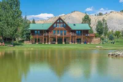 Montrose Single Family Home For Sale: 21766 Uncompahgre Road