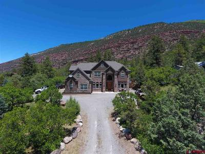Ridgway Single Family Home For Sale: 214 White House Vista