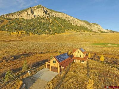 Crested Butte Single Family Home For Sale: 1021 McCormick Ranch Road