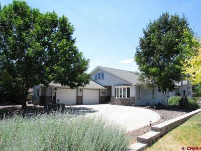 Cedaredge Single Family Home For Sale: 1010 SE Deer Creek Drive