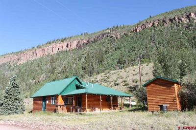 Creede Single Family Home For Sale: 4100 Usfs Road 515 #298