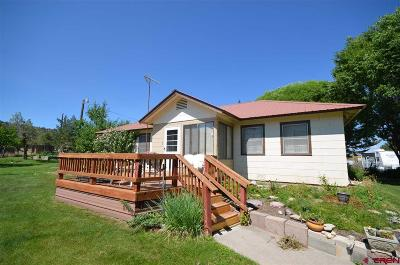Ignacio Single Family Home For Sale: 20 Road 4025
