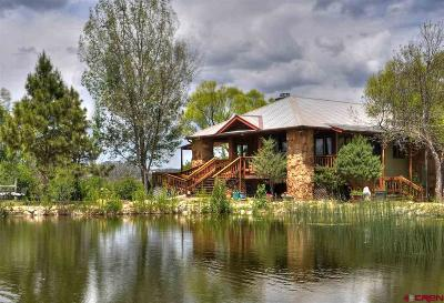 Mancos Single Family Home For Sale: 11555 Road 39