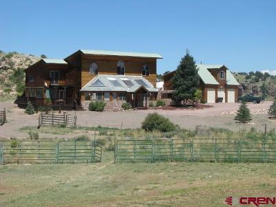 Del Norte Single Family Home For Sale: 4617 Co. Rd. 13