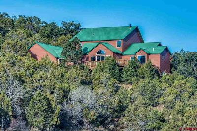 Ouray County Single Family Home For Sale: 35675 Highway 550