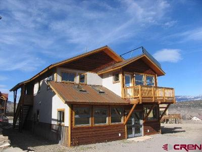 Ouray County Single Family Home For Sale: 436 Amy