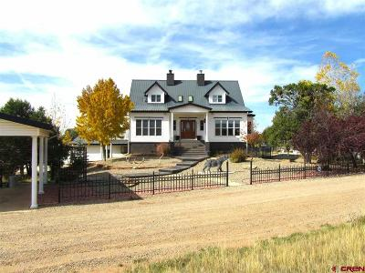 Dolores Single Family Home For Sale: 15600 Road 28.8