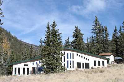 Creede Single Family Home For Sale: 1441 Forest Service Road 5071a