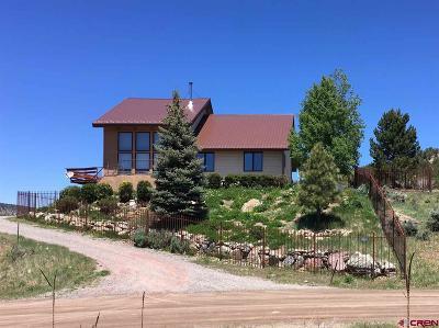 Ouray County Single Family Home For Sale: 525 Park