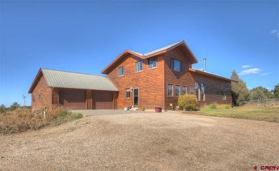 Mancos Single Family Home For Sale: 11935 Road 39.2