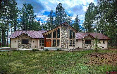 Pagosa Springs Single Family Home For Sale: 730 E Log Hill Road