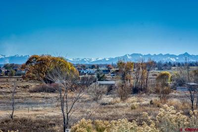 Montrose Residential Lots & Land For Sale: 19 Lone Eagle Road