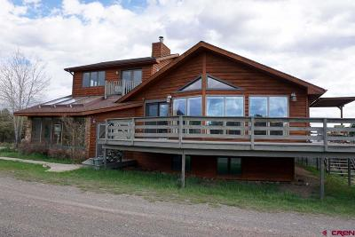 Ouray County Single Family Home For Sale: 5351 County Road 1
