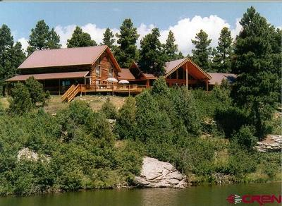 Mancos Single Family Home For Sale: 35324 Road R.5