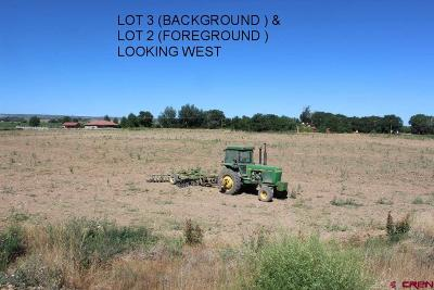 Olathe Residential Lots & Land For Sale: 5223 Highway 348