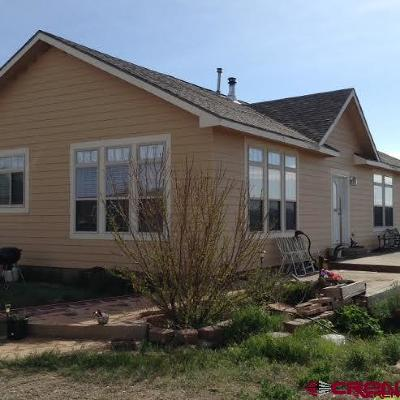 Dolores Farm For Sale: 13060 Road M