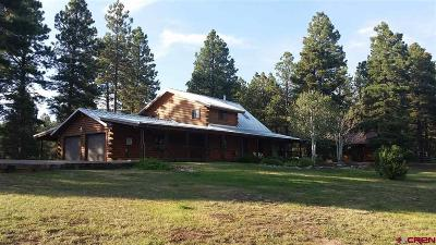 Mancos Single Family Home For Sale: 36765 Road P.8